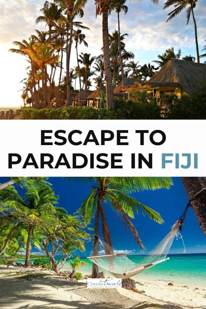palm trees and hammock in fiji