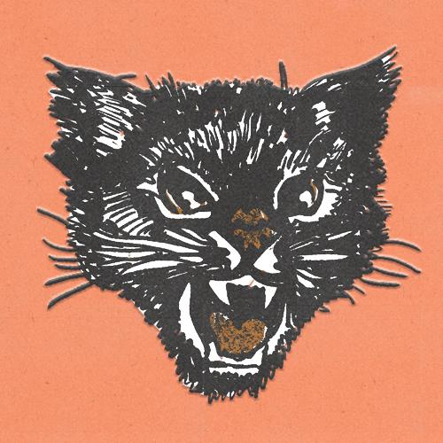 Claudie Linke Illustration_Cat