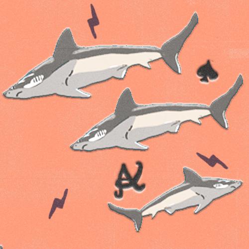 Claudie Linke Illustration_Sharks