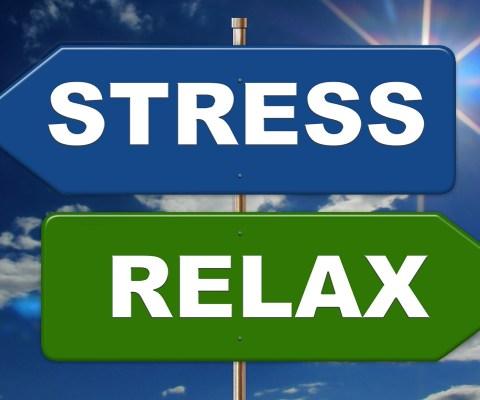 Atelier individuel «Comprendre les mécanismes du Stress et le Gérer»