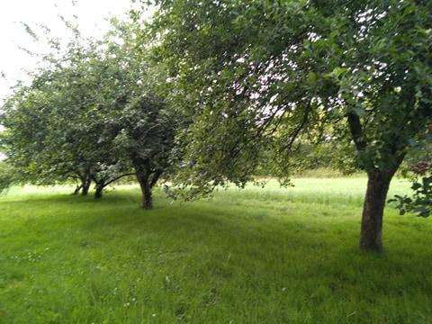 Sophrologie/Relaxation les jardins du Verger Fouesnant