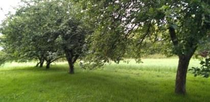 Cours de Sophrologie / Relaxation : Les jardins du Verger à Fouesnant