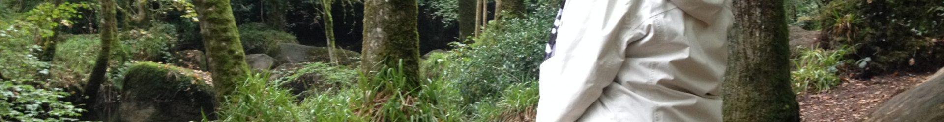 Bain de Forêt dans la Forêt de Huelgoat