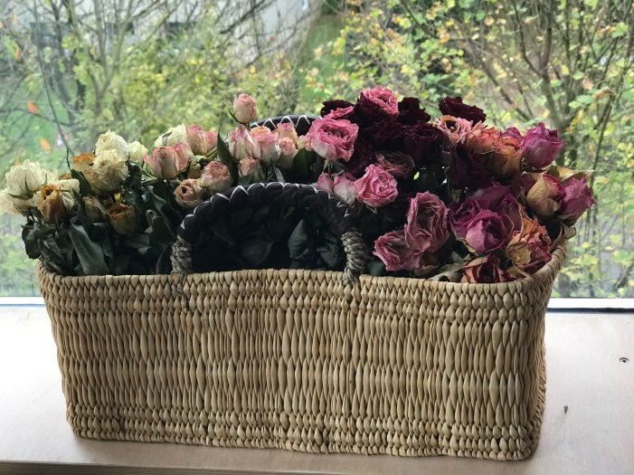 In the mood for fall - claudinesroom