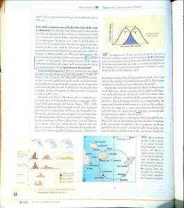 posizionamento di mercato spiegato con il concetto di nicchia ecologica