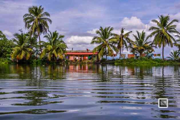 Kerala Backwaters-45