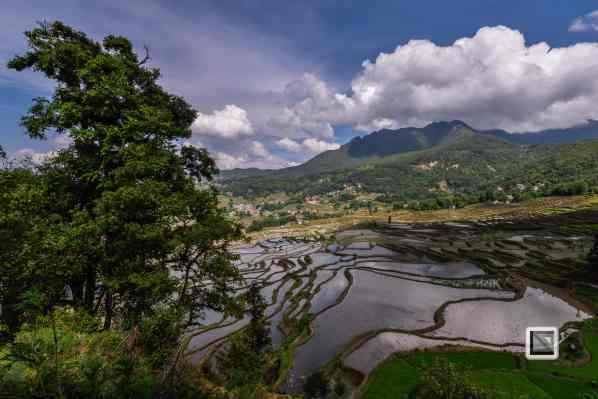 China - Yunnan - Yuanyang-16