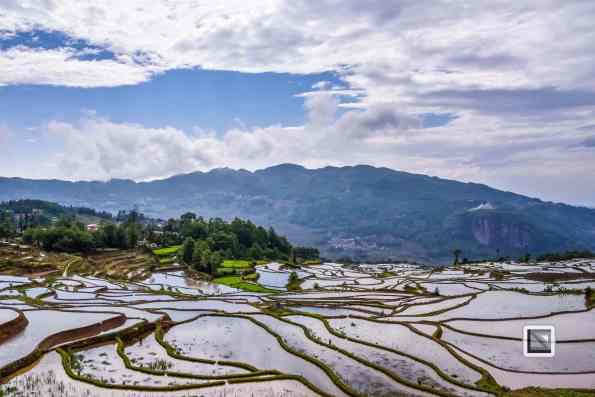 China - Yunnan - Yuanyang-57