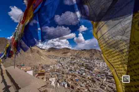 India - Jammu and Kashmir - Leh Ladakh-4