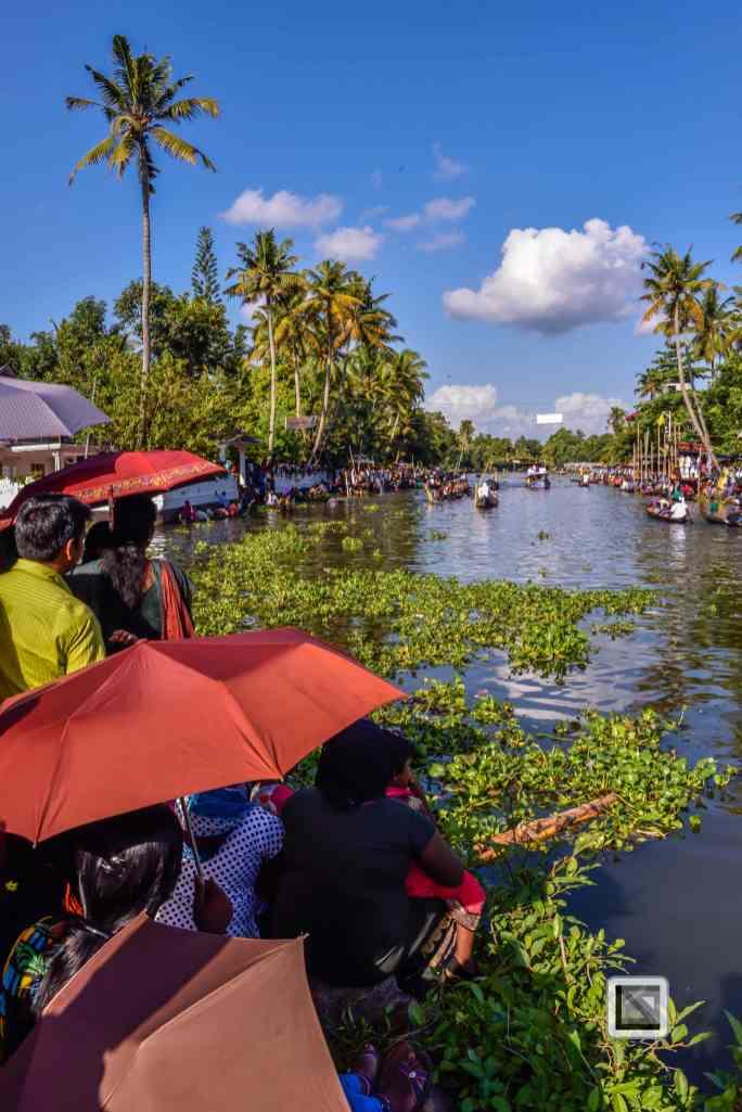 India - Kerala - Kumarakom Boat Race-5