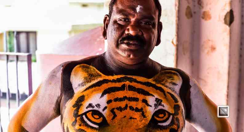 India - Kerala - Thrissur - Onam Festival - Pulikali-21