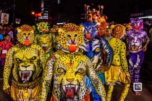 India - Kerala - Thrissur - Onam Festival - Pulikali-84