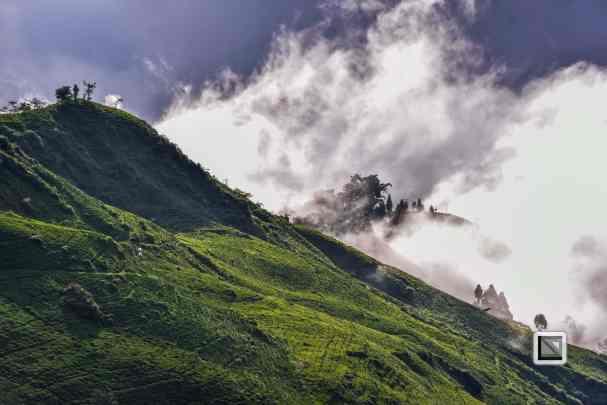India - West Begal - Darjeeling-27