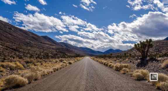 USA - Nevada - Death Valley-49
