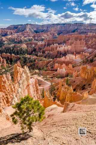 USA - Utah - Bryce Canyon-25