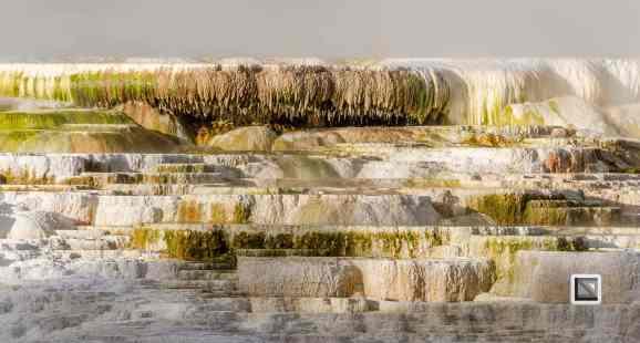 USA - Wyoming - Yellowstone National Park-26