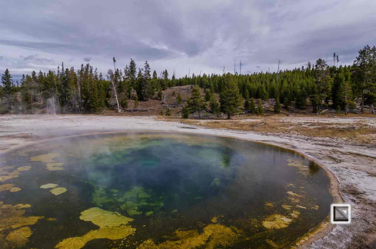 USA - Wyoming - Yellowstone National Park-49