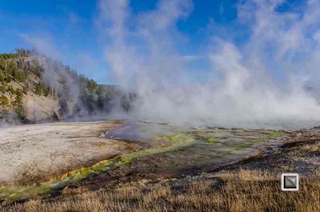 USA - Wyoming - Yellowstone National Park-76