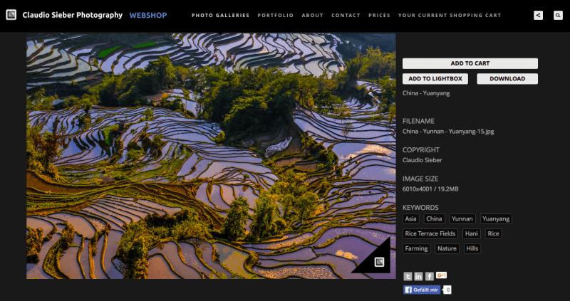 china-photoshelter