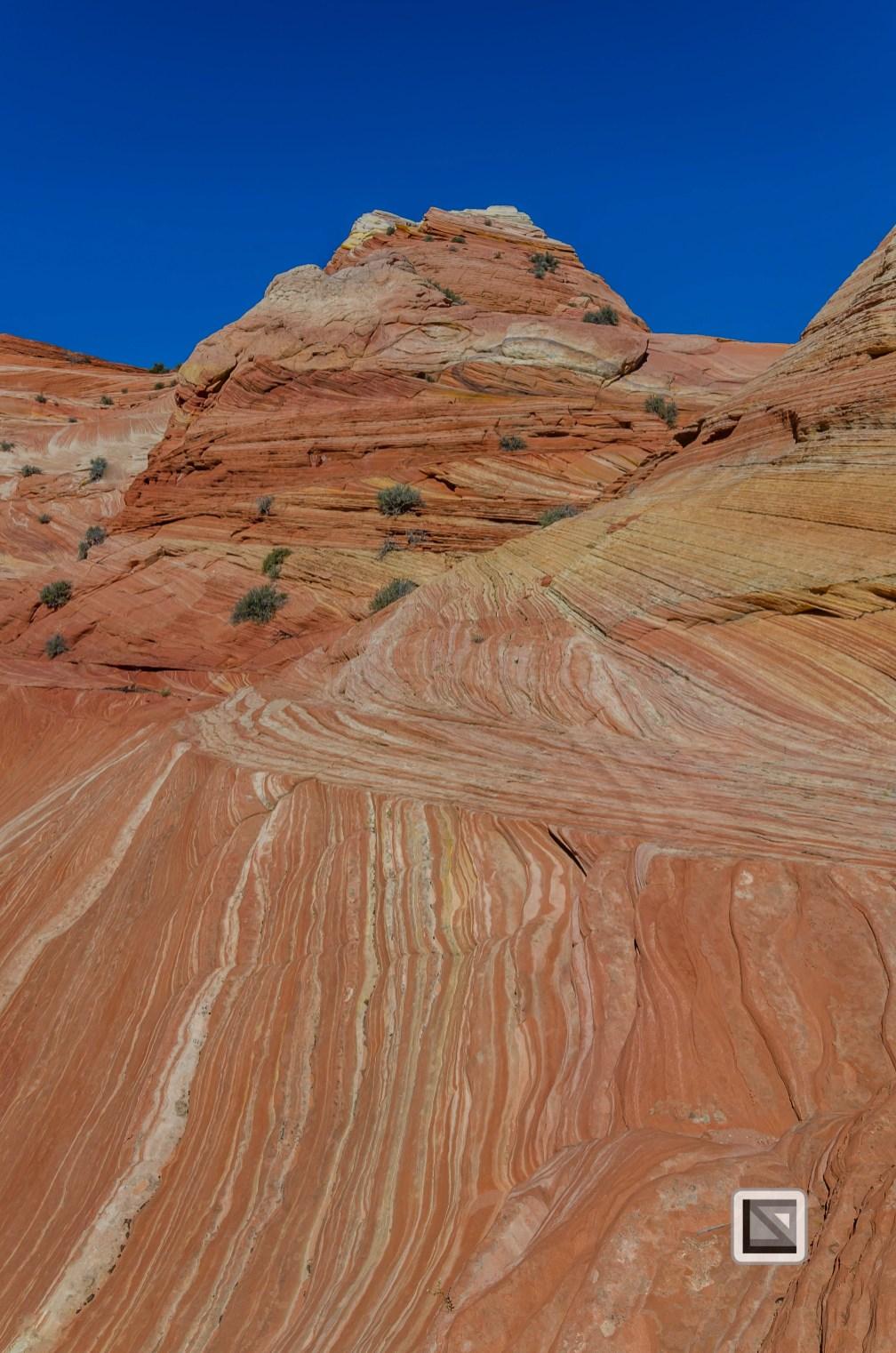 USA - Arizona - Vermillon Cliffs-9