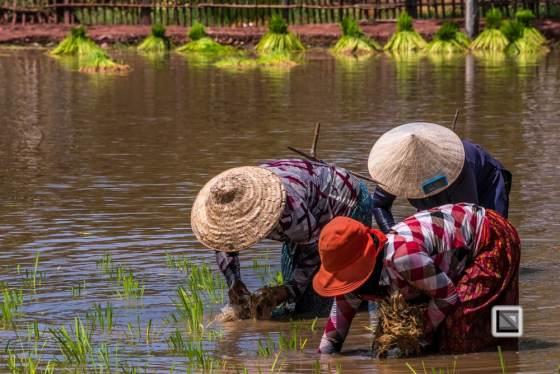 Kampot-188