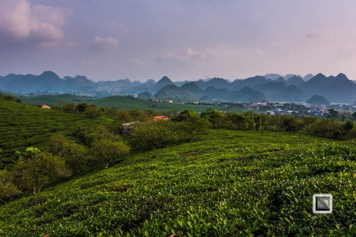 vietnam-moc_chau-son_la_province-18