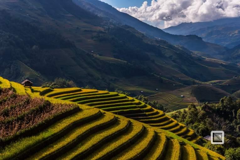 vietnam-mu_cang_chai-yen_bai_province-192