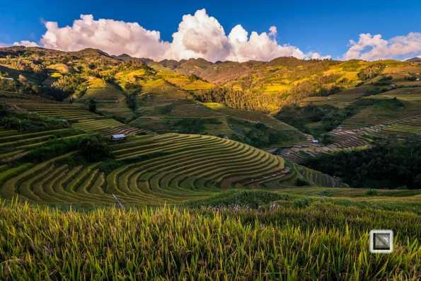 vietnam-mu_cang_chai-yen_bai_province-219