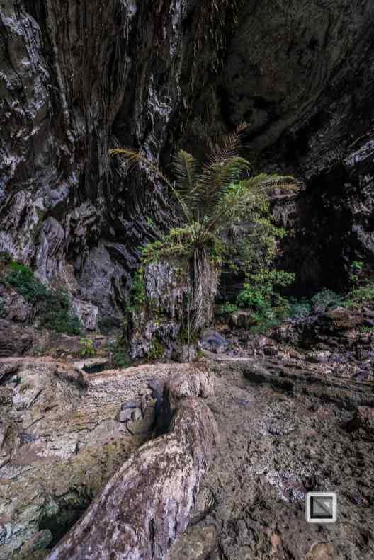 vietnam-phong_nha-hang_thien_cave_system-31