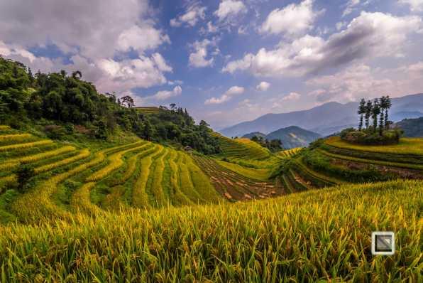 vietnam-ha_giang-bac_quang-37