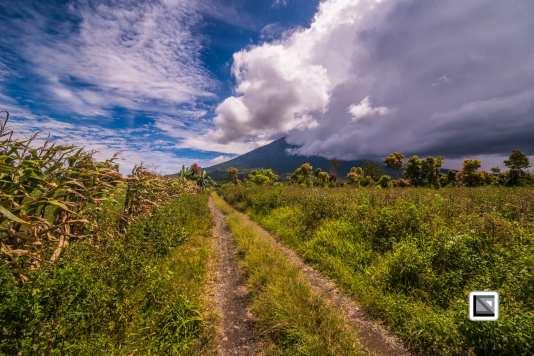 Indonesia-Sumatra-218