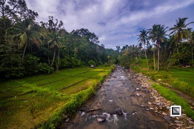 Indonesia-Sumatra-51
