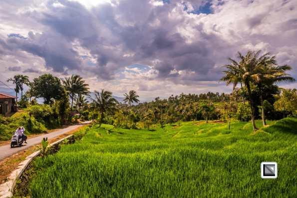 Indonesia-Sumatra-98