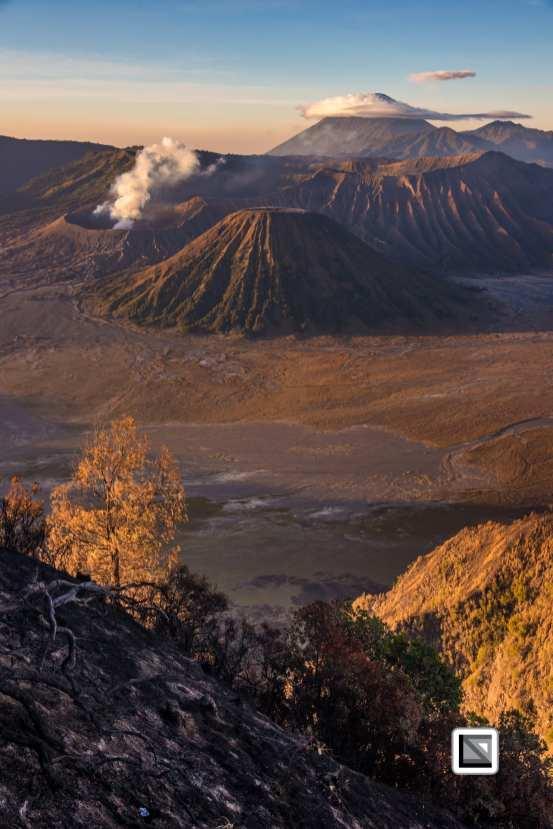 Indonesia-Java-Bromo_Volcano-112