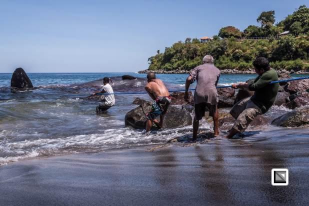 Lamafa - The world's last traditional whale hunters