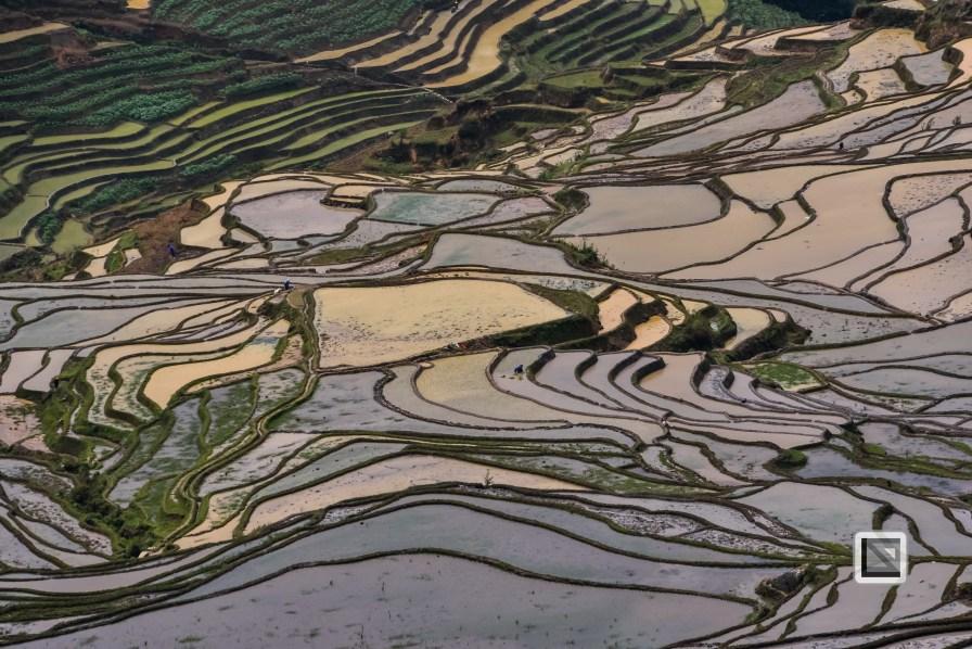 China - Yunnan - Yuanyang-56
