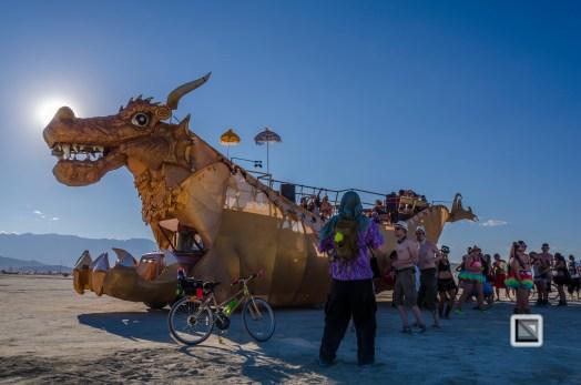 USA - Nevada - Burning Man Festival-61