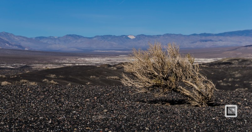 USA - Nevada - Death Valley-25