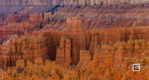 USA - Utah - Bryce Canyon-12