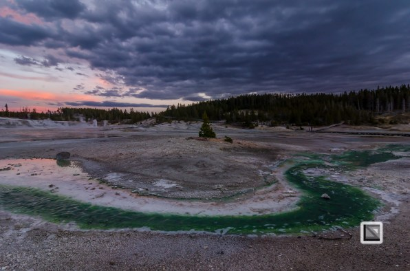 USA - Wyoming - Yellowstone National Park-134