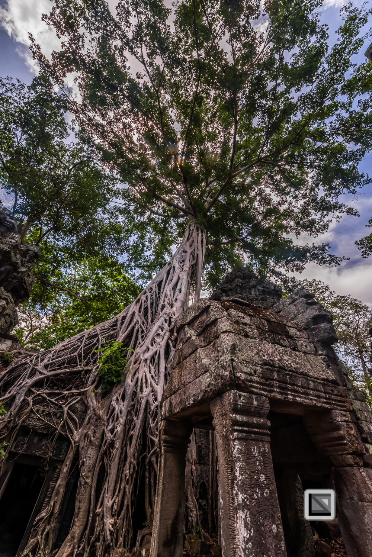Siem Reap - Angkor Wat-109