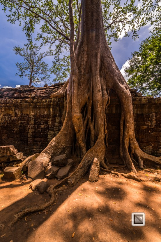 Siem Reap - Angkor Wat-112