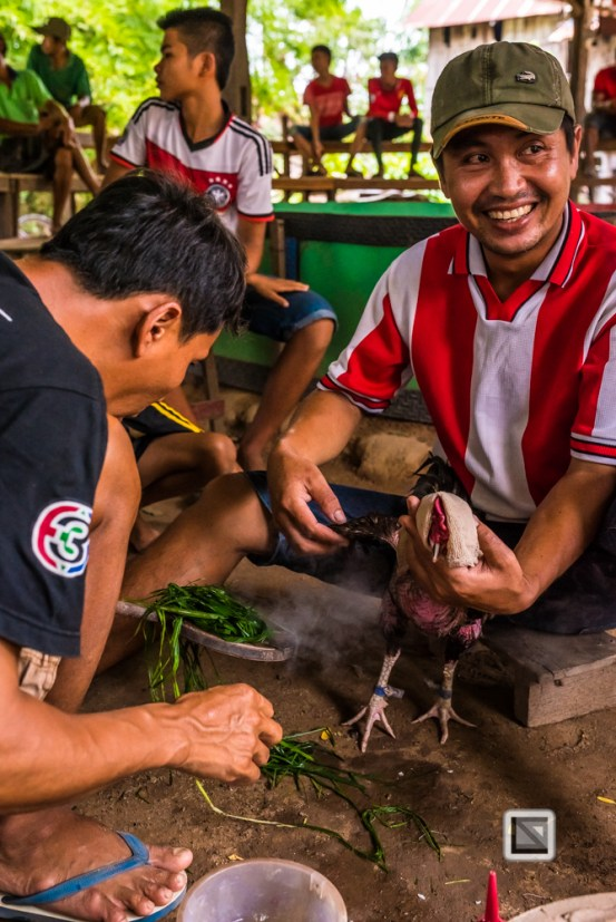 lao-4000-islands-don-dhet-chicken-fight-13