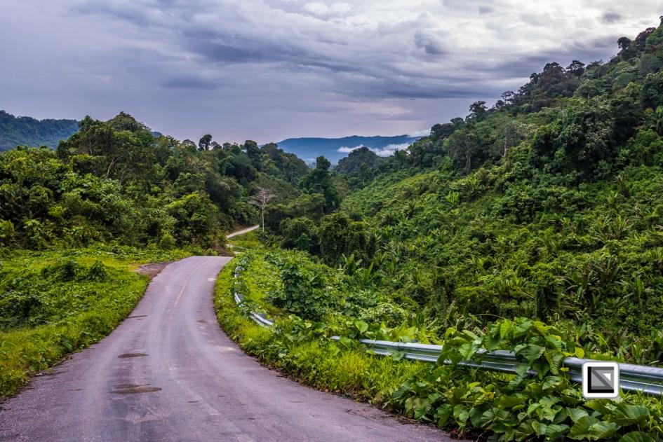 Malaysia-Sarawak-Jungle_Road-27