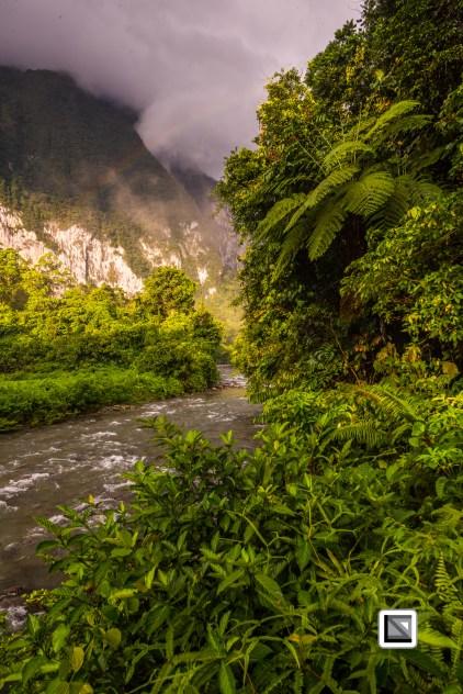 Malaysia-Sarawak-Mulu_Nationalpark2-101