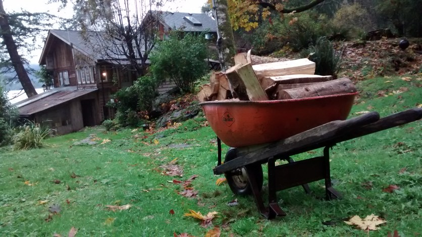 Hauling firewood to the back porch