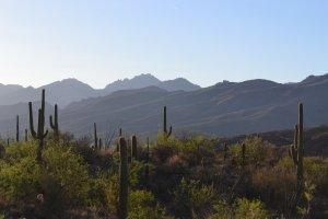 Tucson AZ personal injury attorney Darren Clausen