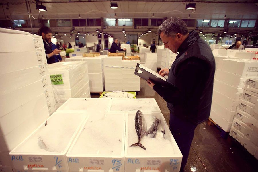 Mercado-del-pescado-Mercabarna