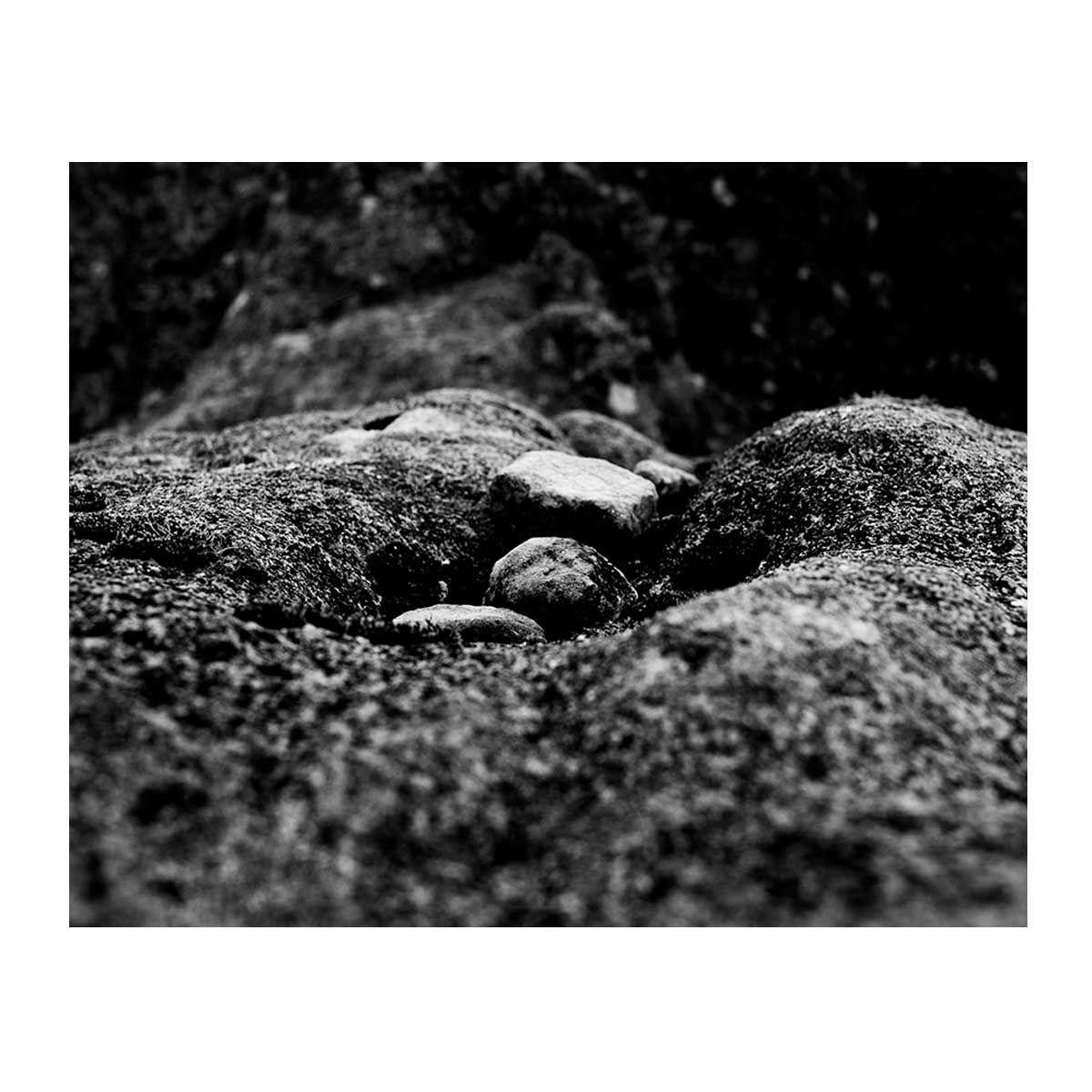 03_Francisco_Vigo