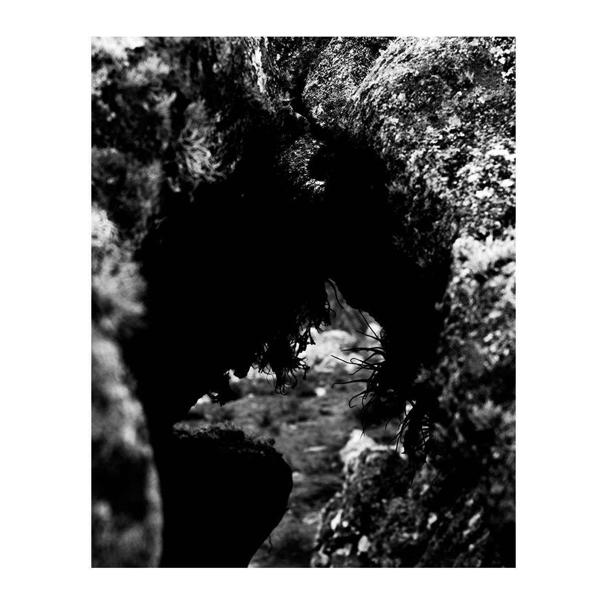 11_Francisco_Vigo